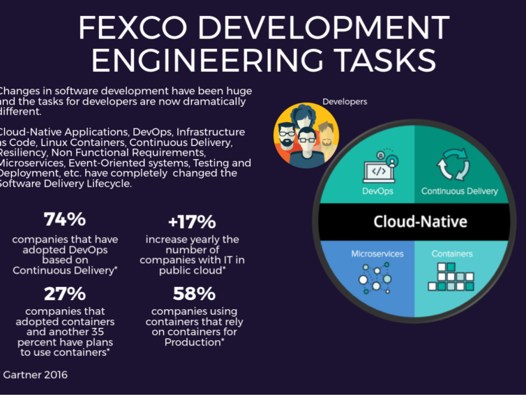 FEXCO Developer Tasks: The Quality Path