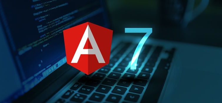 Angular 7 – Updates