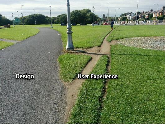 UX: The Ultimate Experience